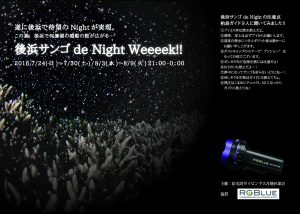 後浜でNight Diving!!